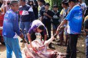 Mulyadi Gotong Royong Sumbang Sapi Kurban ke Masyarakat Sumbar