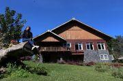 Sensasi Menikmati Kentang Madu Khas Eropa di Kaki Gunung Ijen