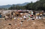 Pengangkutan Sampah di Purwakarta Terkendala Armada Rusak