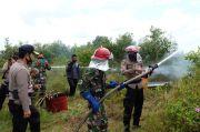 Kapolda Kalsel: Semua Pihak Miliki Peran Penting Cegah Kebakaran Hutan