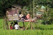 Ketimbang Bikin Gaduh, Rp595 Miliar Dana POP Lebih Baik untuk Internet Gratis