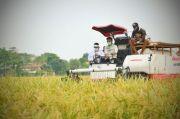 Kontribusi Terhadap Ekonomi Meningkat, PDB Sektor Pertanian Melesat
