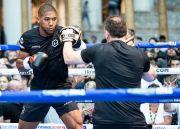Dipecundangi Andy Ruiz Jr, Joshua Ogah Ulang kebodohan vs Pulev