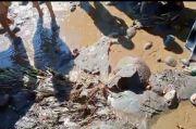 Lereng Gunung Bromo Gempar, Ada Mayat Terbelah Dua