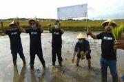 Sinergi dengan Ok Oce, Dompet Dhuafa Bangun Ketahanan Pangan Berbasis Pesantren di Sukabumi
