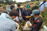 Program Entercrop, Kelompok Tani Binaan PT TPL Panen Jagung
