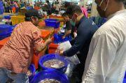 Dinas KPKP Awasi Hasil Perikanan di Pasar Ikan Modern Muara Baru