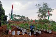 Manfaatkan Lahan Kosong, Jadikan Agrowisata Labu Madu