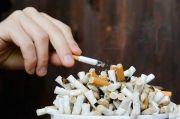 Profesor Ini Bongkar Mitos Cukai Rokok Bukan Kontribusi Industri