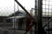 Tahanan Penjara Papua Nugini Kabur Massal, 11 Ditembak Mati, 36 Buron