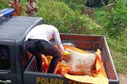 Diduga Dibunuh, Mayat Pria Dibungkus Karung Tersangkut di Sungai Permina