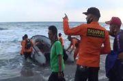 2 Pemuda Hilang Terseret Ombak Pantai Muara Dua Lampung
