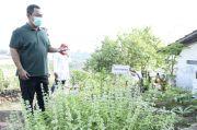 Hendi Dorong Urban Farming Tanaman Pangan di Kota Semarang