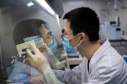 Peneliti: Kasus Pertama Infeksi Ulang Virus Corona Terkonfirmasi
