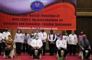 Tolak Tegas Legalisasi Ganja, Banyak Negara Dukung Sikap Indonesia