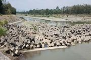 Bedung Sukowati Mengering, Ribuan Hektar Sawah Tak Dapat Air