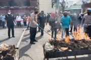 Polrestabes Medan Musnahkan Ganja Kering Senilai Rp1,7 Miliar