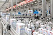 Perusahaan Susu di China Memeras Laba Saat Pandemi