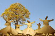 Rumi: Di Musim Dingin, Sebuah Pohon Tengah Mengumpulkan Makanan