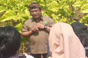 APTI Jabar Nilai Simplifikasi Tarif Layer Bakal Matikan Usaha-Petani Tembakau Lokal