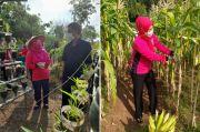 Tak Pasrah Hadapi Pandemi, Warga Rorotan Manfaatkan Lahan Kosong untuk Berkebun