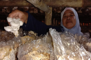 Kualitas Badan Usaha Milik Desa di Purwakarta Masih Rendah