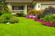 Tips Renovasi Rumah, Bangunlah Taman Sesuai Anggaran