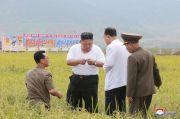 Kritik Ekonomi Kim Jong-un, 5 Pejabat Korut Dieksekusi Mati