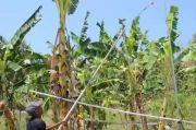 2 Titik Semburan Gas Panas Baru Ditemukan di Kecamatan Godong Grobogan