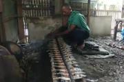 Pandemi COVID-19, Ikan Suree Khas Aceh Bakar Diburu Wisatawan