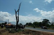 Ada Kabar Digusur, Warga Kertajati Datangi Pohon Jati Pereket