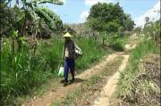Kekeringan Landa Tuban, Warga Harus Susuri Bukit untuk Dapat Air