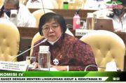Pengembangan Lumbung Pangan, Menteri LHK Singgung Kualitas Lingkungan