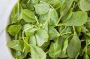Begini Lima Cara Sehat Menikmati Sayur Bayam