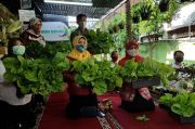 Hari Tani, Dinas KPKP DKI Ikuti Lomba Pekarangan Pangan Lestari