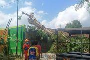 Pohon Beringin Tua dan Berakar Rapuh Tumbang Timpa TK Among Siwi