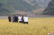 Adik Kim Jong-un Muncul Lagi, Kunjungi Desa Dilanda Banjir di Korut