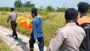 Polisi Temukan Mayat Balita Berjaket Kuning di Pantai Pulau Pari