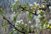 Kisah Awan Mengirim Hujan pada Petani yang Gemar Berderma