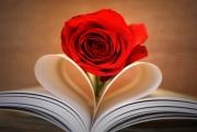 Para Suami Tirulah Sikap Romantis Umar bin Khattab