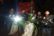 Dua Hektare Ladang Ganja di Kaki Gunung Masurai Merangin Milik Bandar Besar Ditemukan Polisi