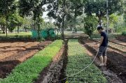 Menyambut Bonus Demografi, Anak Muda Milenial Dirangkul Garap Sektor Pertanian