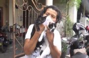Ibu Ini Peduli Hewan, Jadwal Pemberian Makan pun Sudah Dihafal Kucing Liar