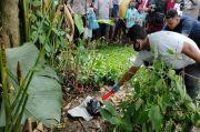 Mayat Bayi Dibungkus Kantong Plastik Dibuang di Taman Bunga