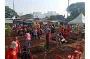 Siapkan Ketahanan Pangan, Warga Kemayoran Bentuk Kebun Bhineka RW 06
