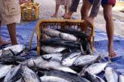 Produksi Ikan Laut di Blitar Diprediksi Amblek, Ini Sebabnya
