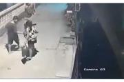 Pencurian Aglonema Marak, Pelaku Tak Hiraukan CCTV dan Pagar Tinggi