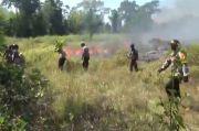 5 Hektare Lahan Savana di Taman Nasional Rawa Aopa Terbakar