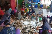Tambah Penghasilan saat Pendemi, Kaum Ibu di Pemalang Jadi Buruh Sortir Ikan dan Sayuran