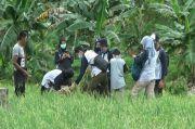 Keren Ini, 150 Petani Milennial di Bangka Tengah Dikumpulkan dan Dibentuk Komunitas